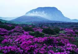 Угасналият вулкан Халласан