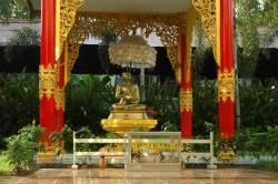 най-високата пагода на земята